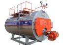 Gas & Oil Fired Boiler